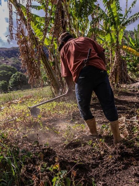 O direito à comida vem do (direito ao) solo
